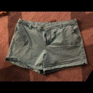 Lane Bryant aqua shorts